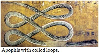 jet_stream_loops_coils